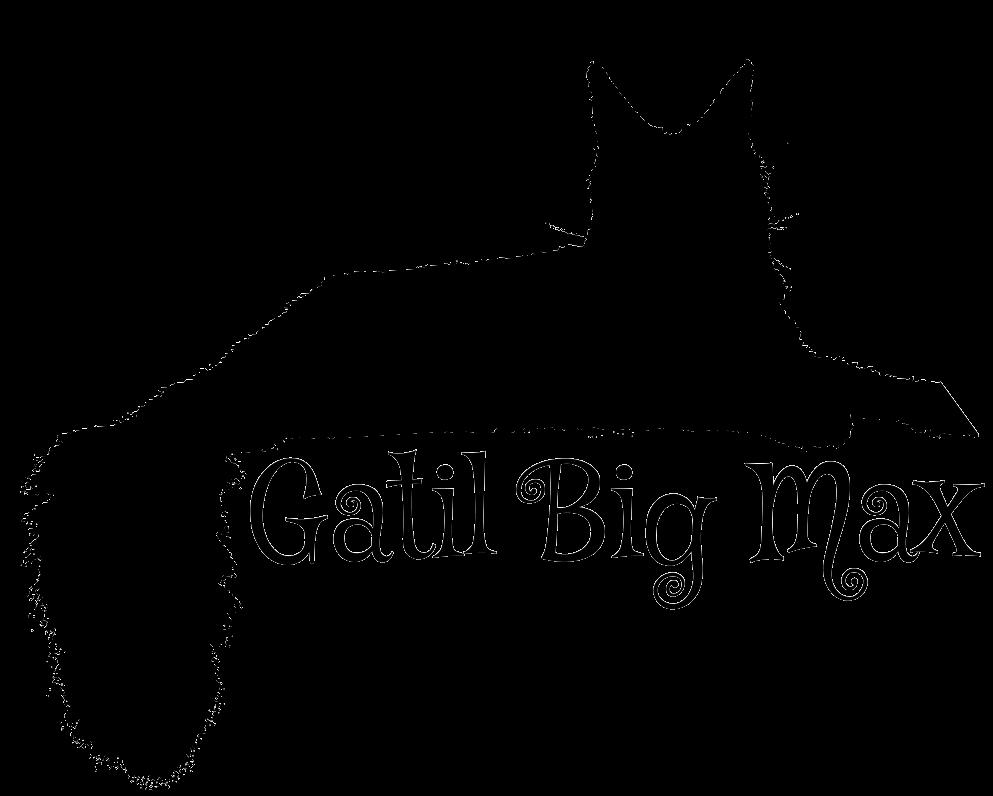 Gatil Big Max
